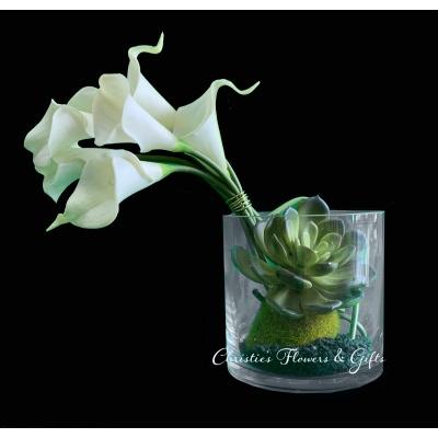 Calla and Succulents