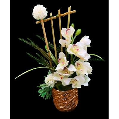 Golden Bamboo Orchids