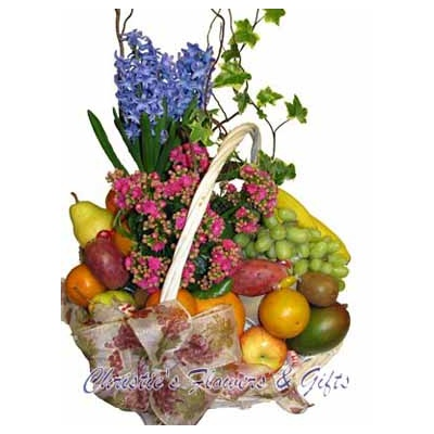 The Freshness Basket