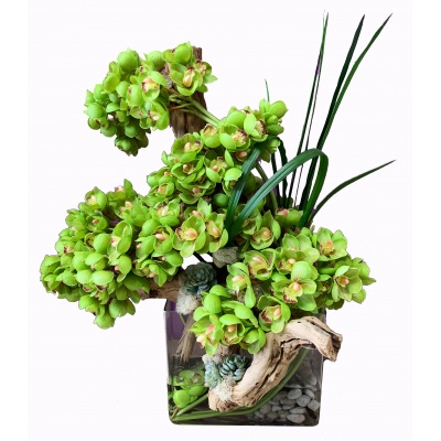 Silk Green Cymbidium Orchid